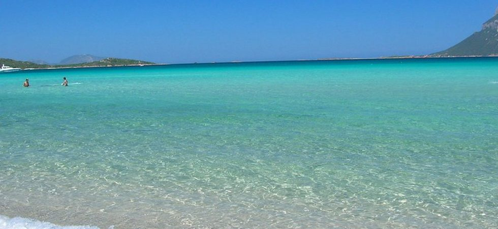 Waterfront apartments Sardinia sale with rental income