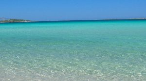 Waterfront apartments Sardinia sale with 3% net rental income