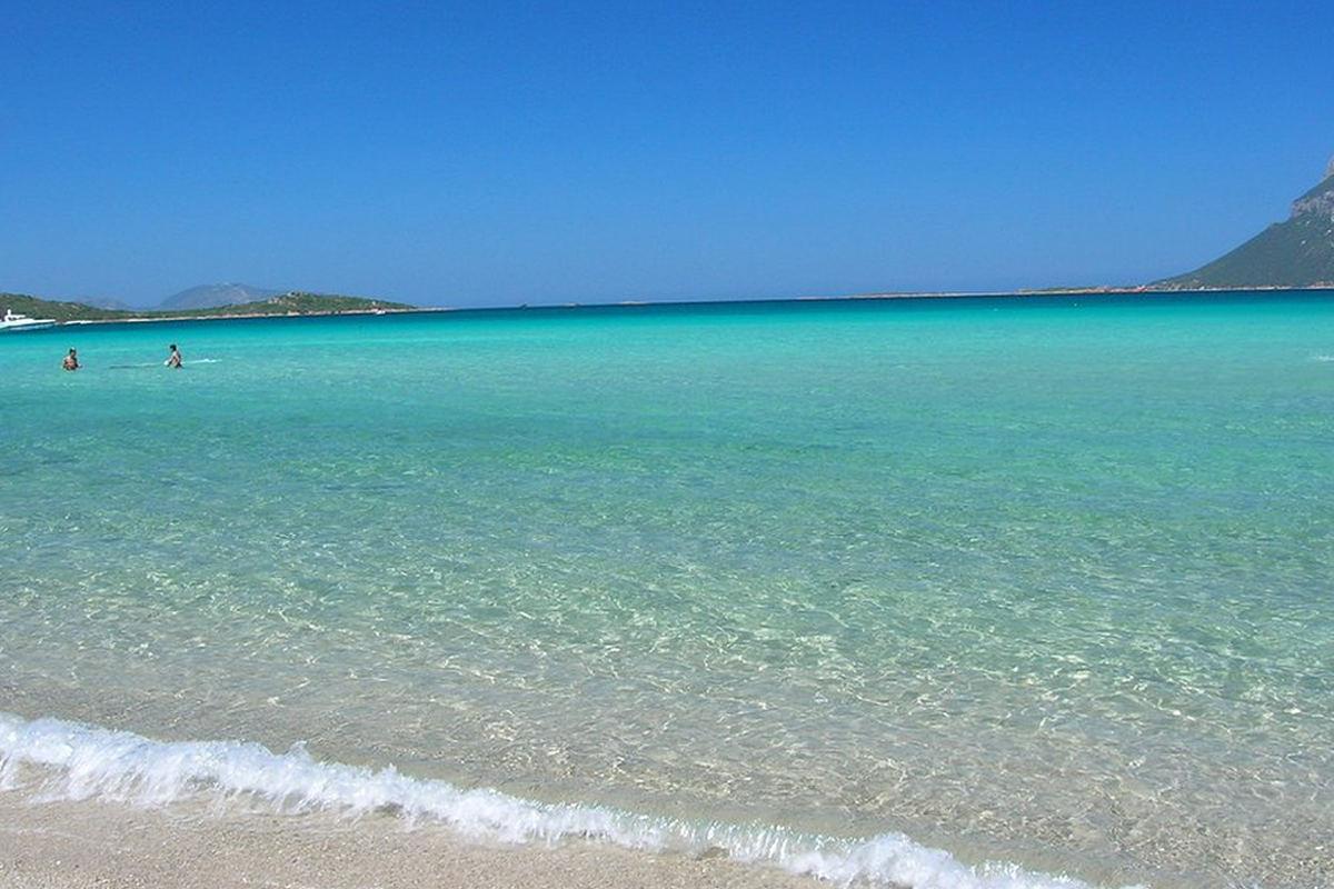 Appartamenti Sul Mare In Sardegna
