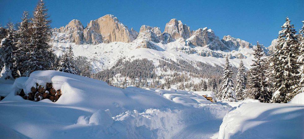 Apartments Val di Fiemme sale guaranteed rental income 5%